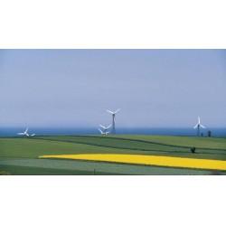 Akıllı enerji sistemleri, biokütle ve diğer öngörülebilir düşük karbonlu çözümlerden elde edilen baz yük ile rüzgâr ve güneş gibi yenilenebilir enerjilerin istikrarsız tedarikini dengeler