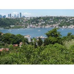 İstanbul'da da son yüzyılda hava sıcaklıklarında 1 derece artış kaydedildi.