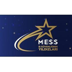 MESS İş Güvenliğinin Yıldızları Ödülleri